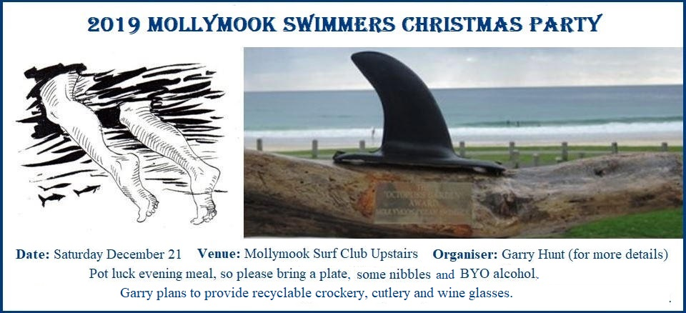 Mollymook Ocean swimmers,mollymook news,mollymook beach waterfront,destination mollymook milton ulladulla,Mollymook