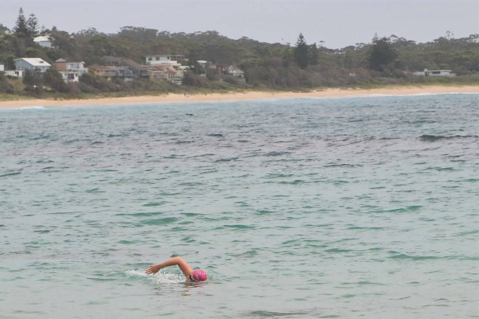 Mollymook ocean swimmers,Mollymook,Destination Mollymook Milton Ulladulla,Mollymook Beach,Mollymook Beach Waterfront