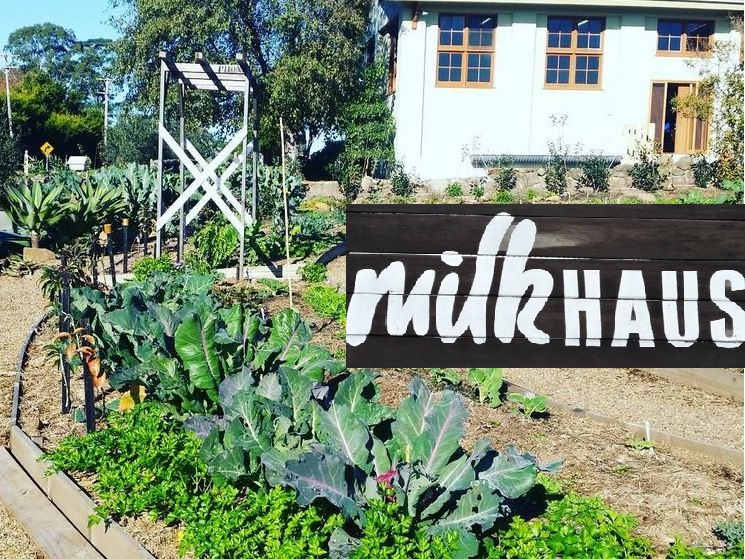 Milk Haus,milton,nsw,cafe,canteen,wholefood,restaurants