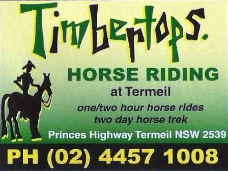 Horse riding,Timbertops horse riding,Mollymook Horse riding,Ulladulla Horse riding,Mollymook beach waterfront,Tourist info