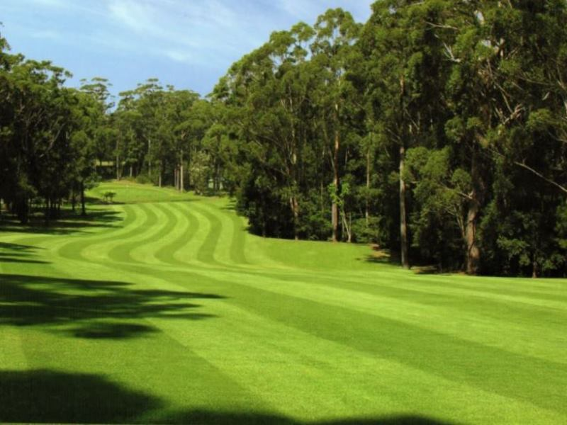 Mollymook golf club,Mollymook Hilltop course,Mollymook,golf