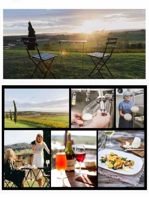 Cupitt's,Native cafe,Mollymook surf club,Millhouse,Allure on Ocean,mollymook,Lake Edge,Burrill Lakes,restaurant