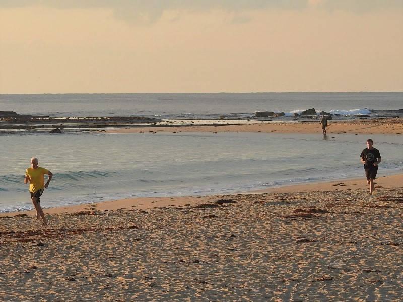 Mollymook ocean swimmers,Destination Mollymook Milton Ulladulla,Mollymook News,Mollymook Beach Waterfront,Florance Head,bush walk
