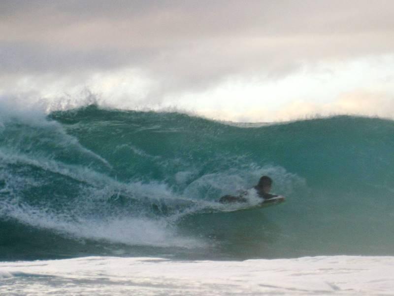 Mollymook ocean swimmers,Mollymook,Milton,Ulladulla,beach,swimmers,accommodation