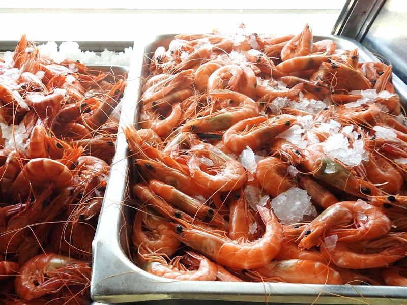 the fish shop,burrill lake,lake burrill,Zoran,coilia lake prawns