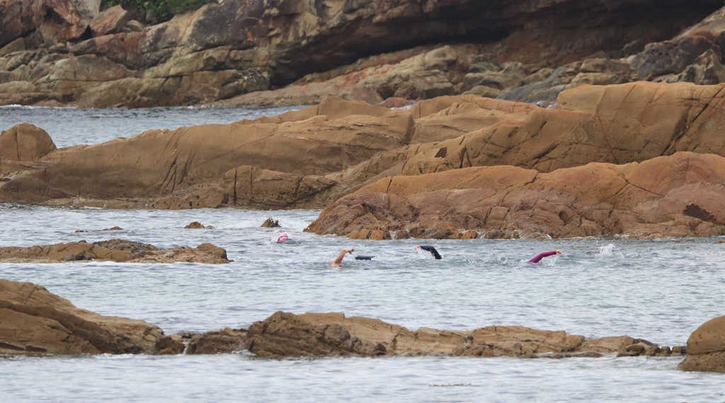 Mollymook ocean swimmers,Mollymook,Destination Mollymook Milton Ulladulla,Mollymook Beach,Mollymook Beach Waterfront,Tathra,Tathra beach,Tathra Ocean Swimming