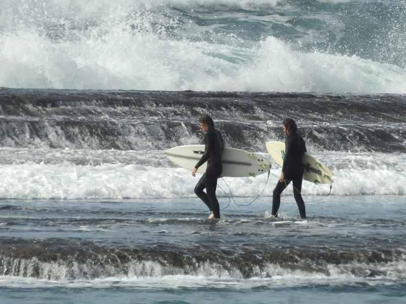 Mollymook ocean swimmers,mollymook beach,Mollymook surf,mollymook