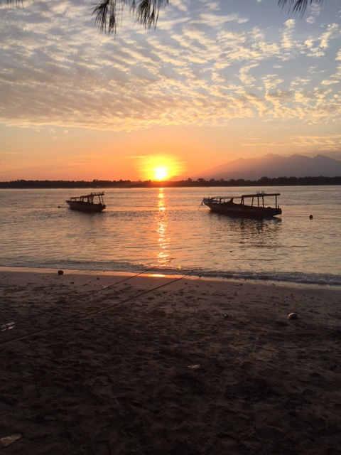 Mollymook ocean swimmers,Mollymook Beach,Mollymook Beach Waterfront,mollymook bike rides