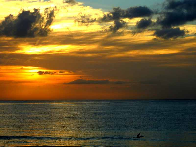 Mollymook Ocean swimmers,mollymook beach,winter swimmers,Mollymook surf club