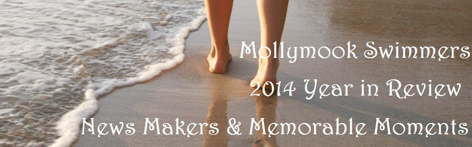 Mollymook,ocean,swimmmers,beach,2014,accommodation