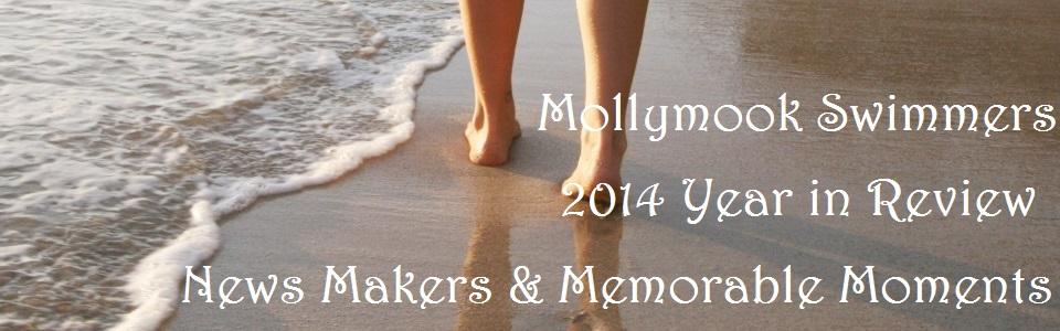 Mollymook,ocean,swimmmers,beach,2014,accommodation