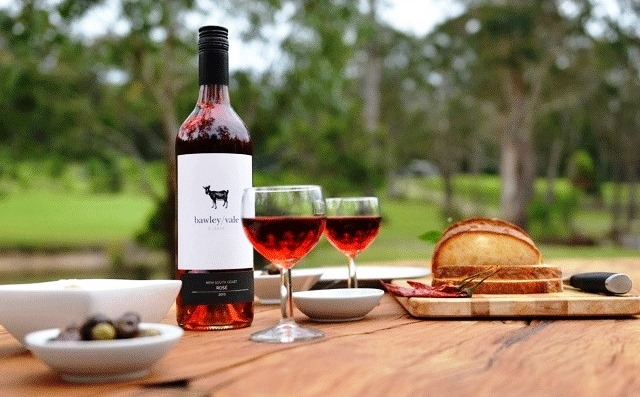 Bawley Vale Estate,Jazz in the vines,Vineyard Wine Tasting,wine tasting,Bawley Vale