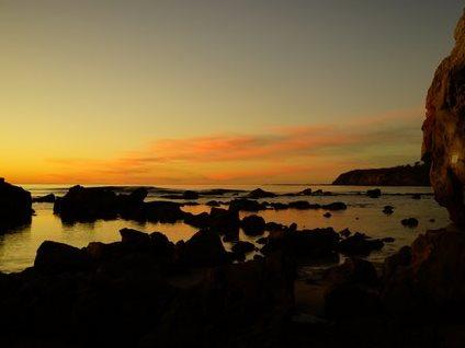 Mollymook ocean swimmers,mollymook,ocean,mollymook beach,beach