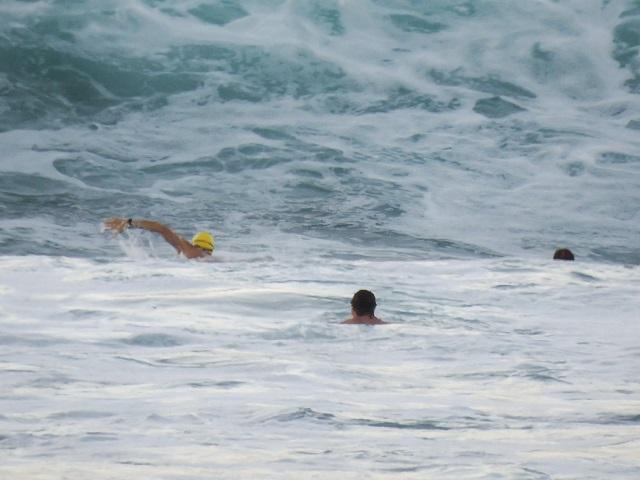 Mollymook Ocean Swimmers,mollymook.ocean,swimmers,beach