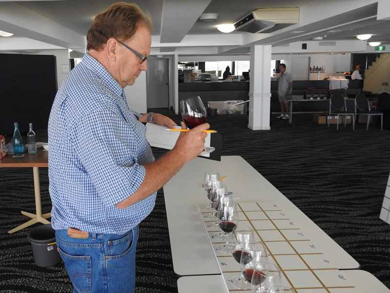 2016 South Coast Wine Show,south coast wine show,wine show,south coast,wine,2016