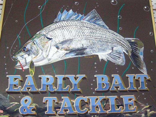 Early Bait and Tackle,milton,mollymook,ulladulla,beach,fishing