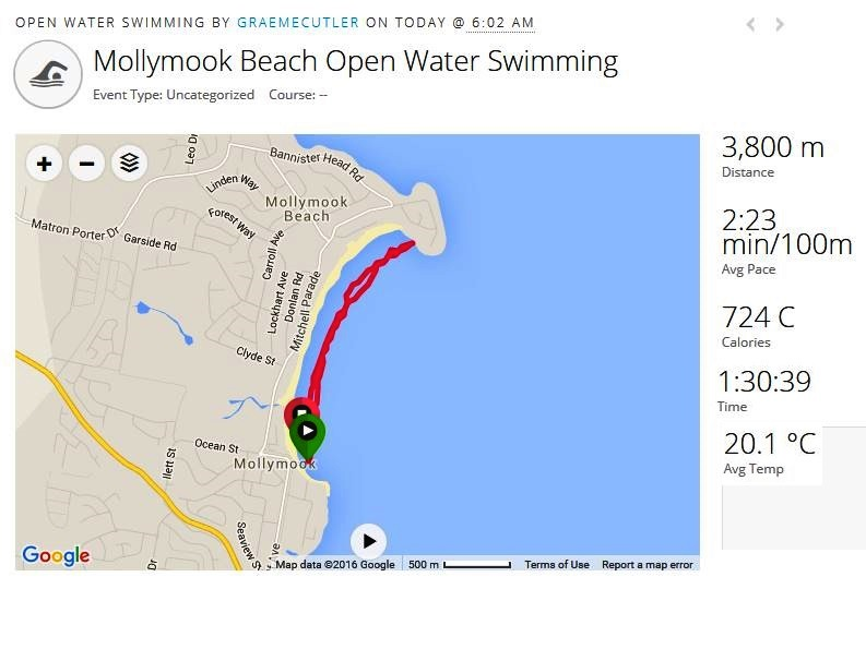mollymook,Mollymook beach,mollymook surf club,mollymook news,swimmers,new years day,2016