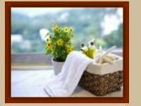 Hands-on Mobile Massage Therapies,Mobile Massages,massage therapy,Mollymook,Milton,Ulladulla