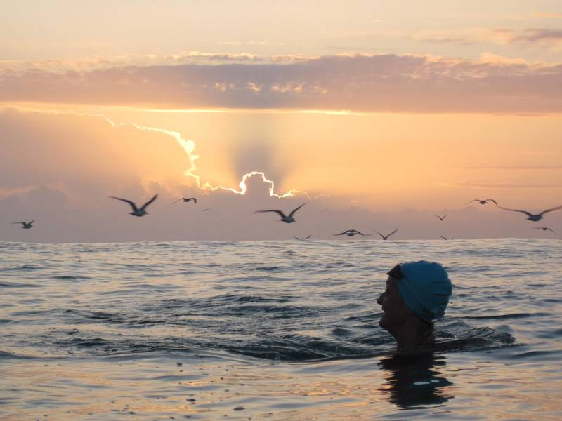 2019 Mollymook Ocean Swim,Mollymook ocean swimming,Mollymook Ocean Swim,mollymook ocean swimmers,mollymook beach waterfront