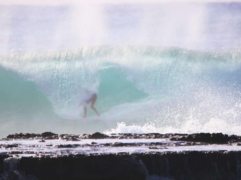 Mollymook ocean swimmers,mollymook news,mollymook beach waterfront,destination mollymook milton ulladulla