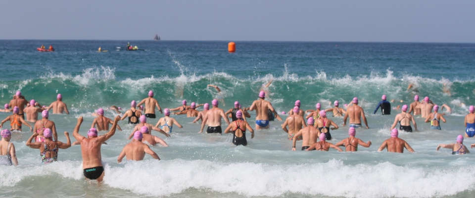 Mollymook Ocean swimmers,mollymook beach,mollymook Ocean swimming,2019 Broulee Ocean Swim,Broulee Ocean Swim,2019 Mollymook Ocean swim Classic