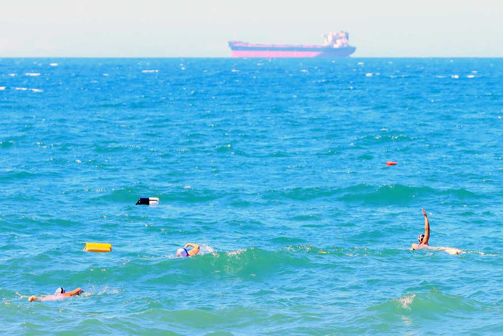 Mollymook ocean swimmers,Mollymook,Destinatihon Mollymook Milton Ulladulla,Mollymook Beach,Mollymook Beach Waterfront