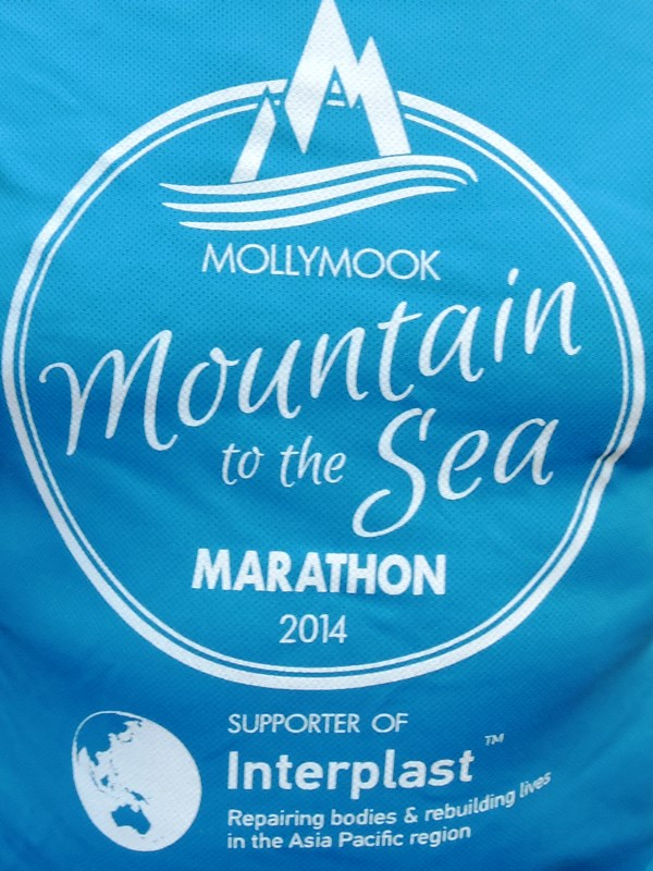 Mollymook Marathon,Mollymook,ocean,swimmers,Pigeon House,Cupitts,Burrill Lake