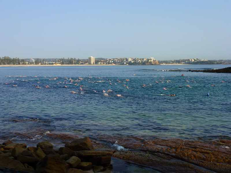 Spring time,spring,Mollymook beach,swimmers
