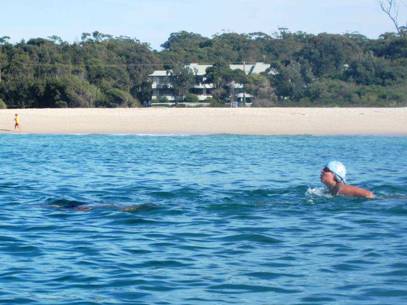 mollymook,beach,ocean,swim,waterfront,accommodation