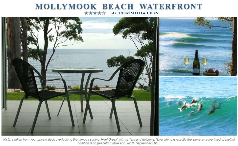 guest satisfaction,Mollymook Beach Waterfront Reviews,Mollymook Beach Waterfront,Best Accommodation in Mollymook
