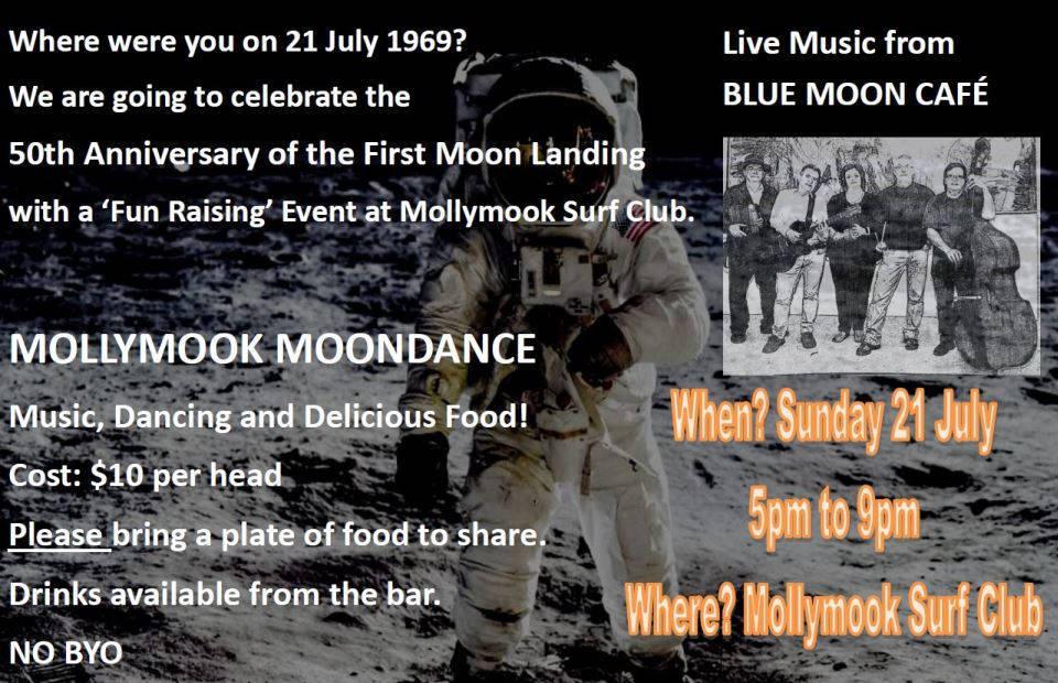 Mollymook ocean swimmers,Destination Mollymook Milton Ulladulla,Mollymook News,Mollymook Beach Waterfront,Things to do,Mollymook