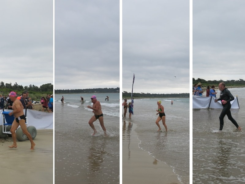 Mollymook Ocean Swimmers,mollymook,ocean,swim,swimmers,beach,ocean swim classic,classic