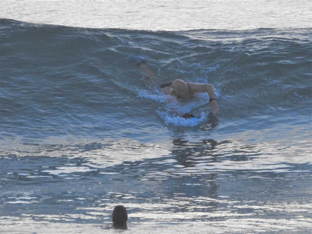 Mollymook Ocean swimmers,mollymook news,mollymook beach waterfront,destination mollymook milton ulladulla,Broulee Ocean swim,Mollymook Waves