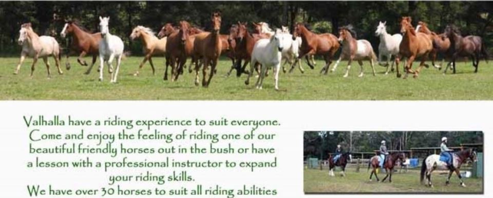 Horse riding,Valhalla horse riding,Things to do,Mollymook Horse riding,Ulladulla Horse riding,Mollymook beach waterfront,Mollymook