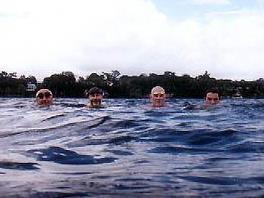 Mollymook Ocean Swimmers,Mollymook,ocean,swim,swimmers