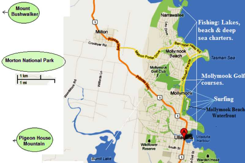 accommodation,mollymook,ulladulla,mollymook golf,mollymook motel,accommodation ulladulla,Bed and Breakfast
