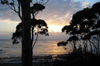 ulladulla,accommodation,mollymook apartments,milton accommodation,ulladulla accommodation,accommodation in ulladulla