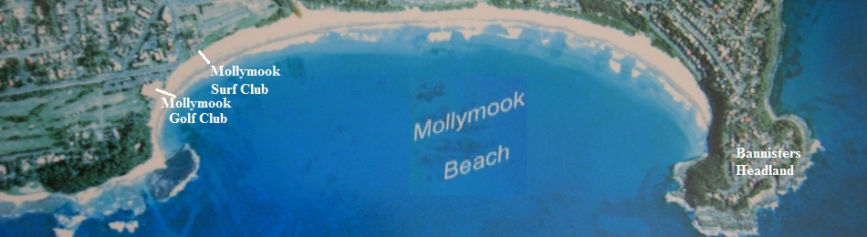 Mollymook Ocean swimmers,Mollymook,Milton,Ulladulla,accommodation,swimmers,beach